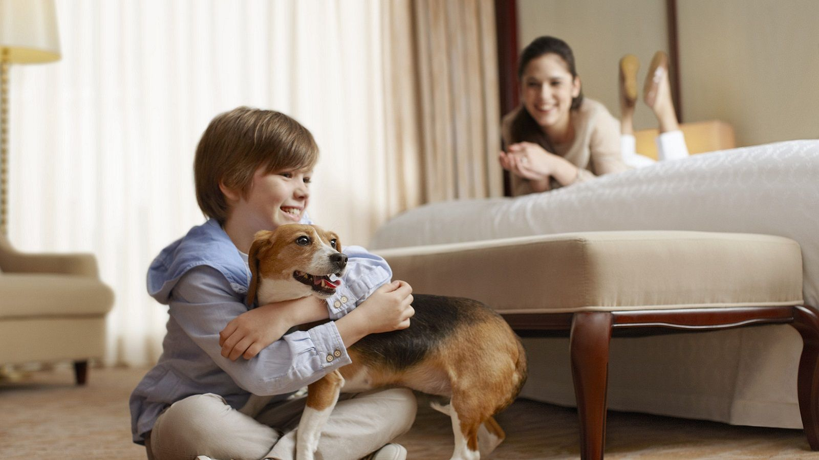 Hotel Features - Pet Friendly Hotel